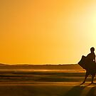 Epson Intnl Panos ~ Bronze 2012 ~ Heading Home, Gerroa Beach by Rosalie Dale