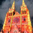 St Mary's Cathedral lit for Vivid Sydney 2010 by Erik Schlogl