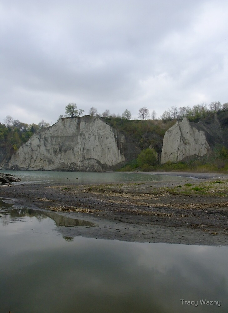 Scarborough Bluffs On A Rainy Day by Tracy Wazny