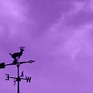 Purple Sky and a Weathervane by Debbie Robbins