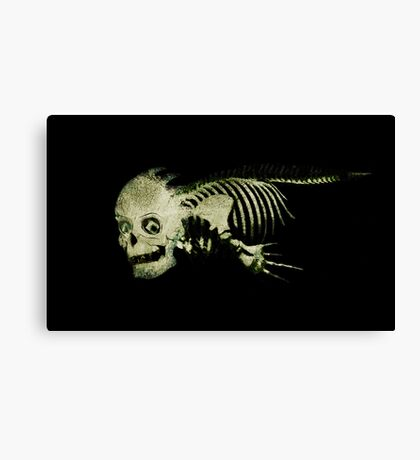 Whale Bones Canvas Print