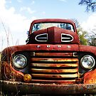 FORD Truck by bulldawgdude