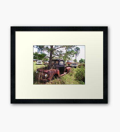 TREE FORD Framed Print
