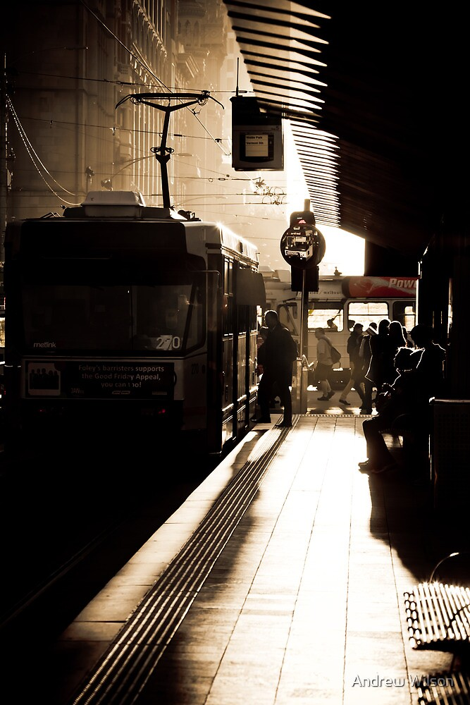 Melbourne Tram Stop by Andrew Wilson