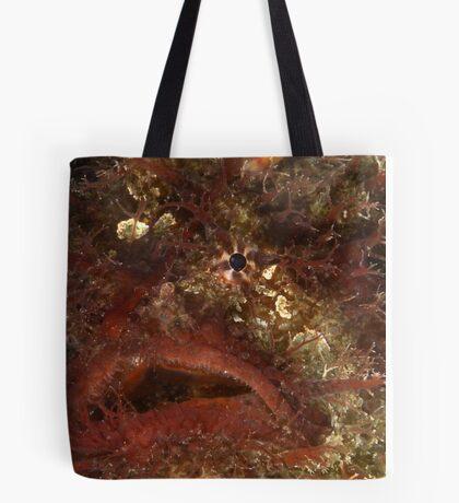Tasselled Portrait Tote Bag