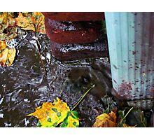 Rain Gutter Photographic Print