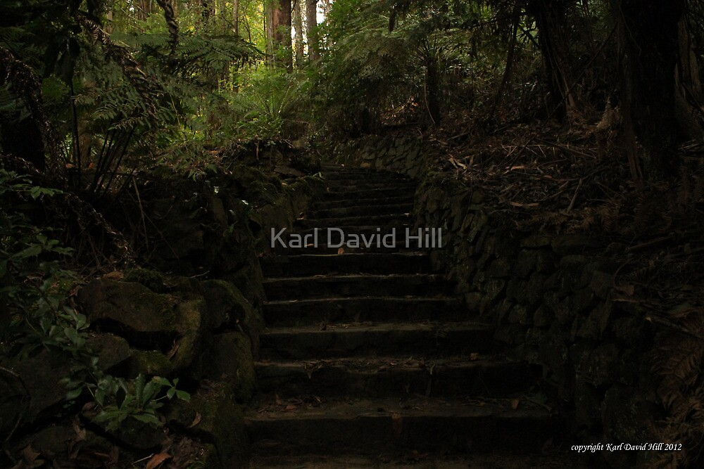 the path 002 by Karl David Hill