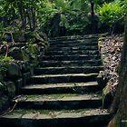 the path 004 by Karl David Hill