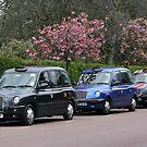 Three London cabs by Segalili