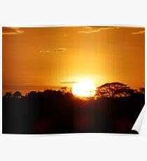 African Sunrise Poster