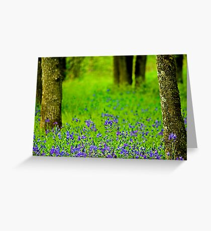 A Little Bit Of Spring Greeting Card
