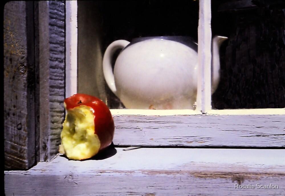 Window Dressing by Rosalie Scanlon