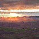 Palouse sunrise by Steve Biederman