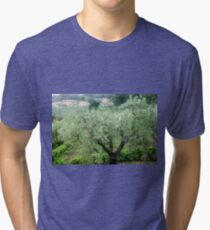 Olive tree (Olea europaea) Photographed in Umbria, Italy  Tri-blend T-Shirt