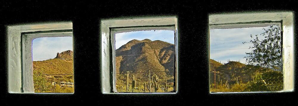 The View  by John  Kapusta