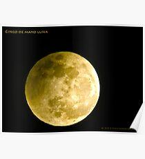 Cinco De Mayo Luna Poster