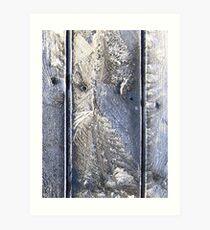 Frost Owl #01 Art Print
