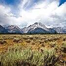 Mt. Moran by Steve Biederman
