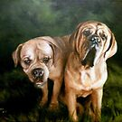 Honey & Brutus by Ross Aberle