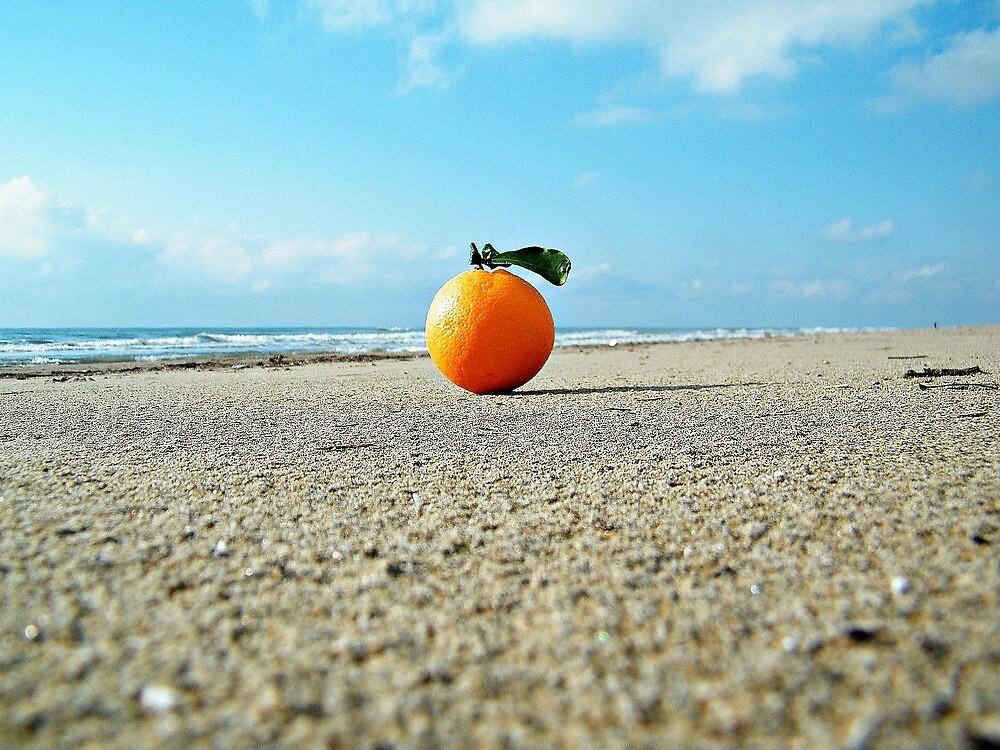 orange... by rinodelvecchio