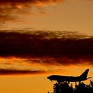 SUNSET FLYING by normanorly