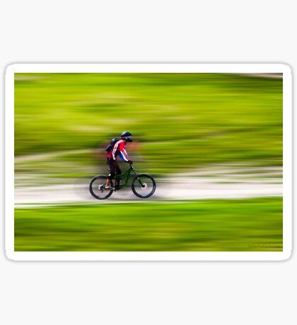 Mountain Biker Sticker