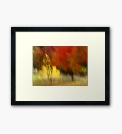 My Autumn View Framed Print