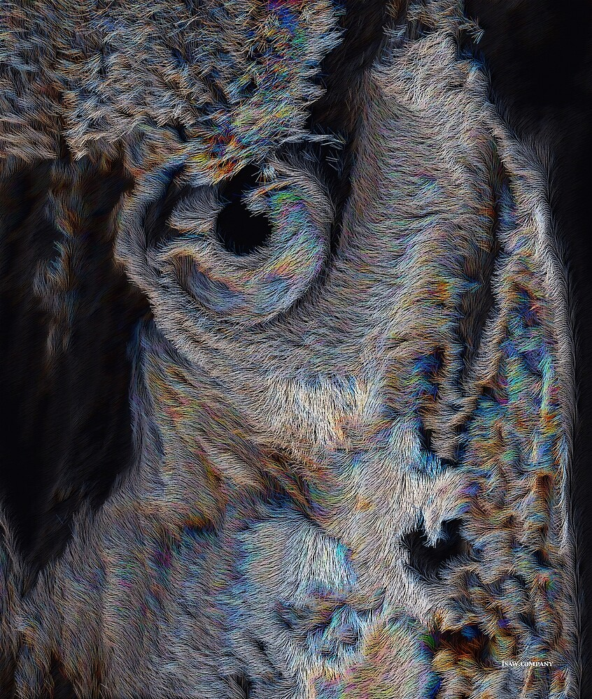 The Old Owl That Watches by iSAWcompany