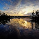 Fleet Pond @ Dawn - May Bank Holiday by martin bullimore