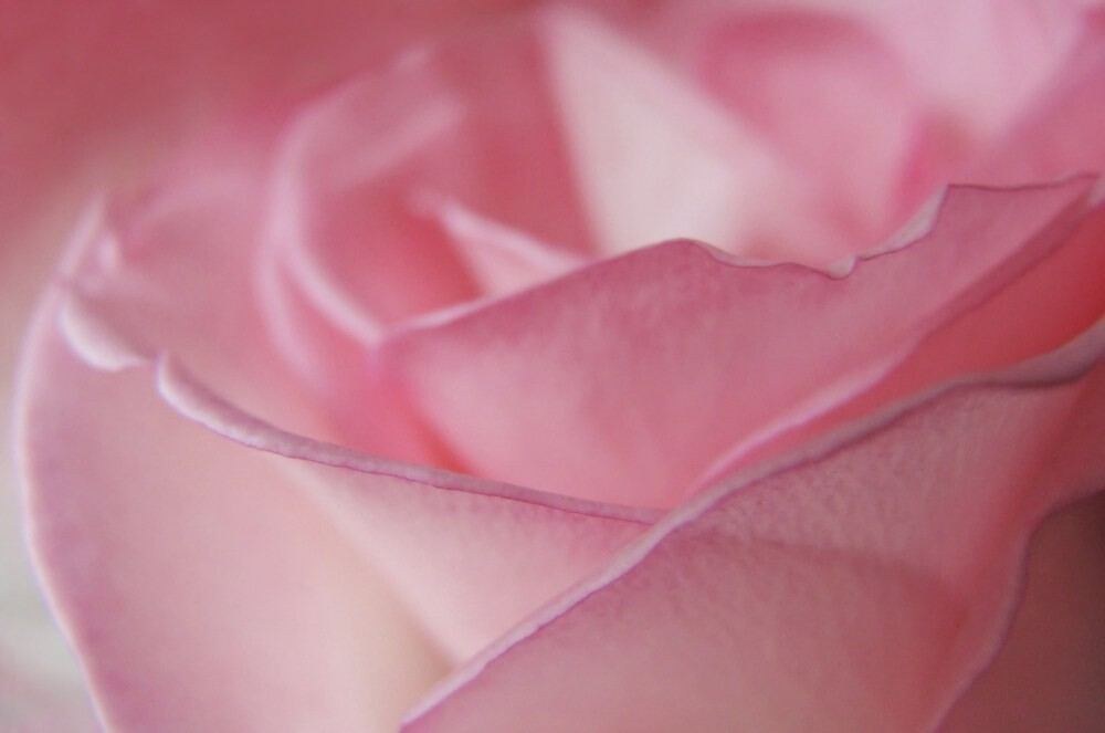 Shades of Romance by Tracy Friesen