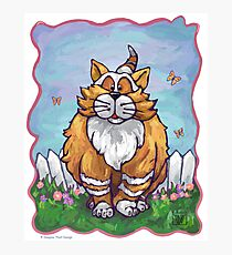 Animal Parade Ginger Cat Photographic Print