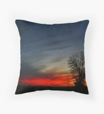 Primary Colors Throw Pillow