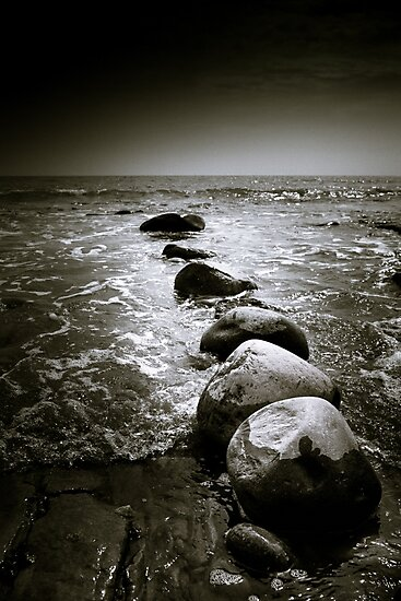 Into the Sea... by Heidi Stewart