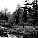 London - Crystal Palace - Dinosaurs by rsangsterkelly