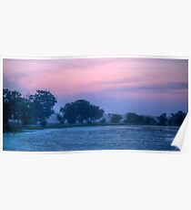 Early Morning At Brazos Bend State Park Poster