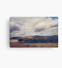 Growth and Movement Canvas Print