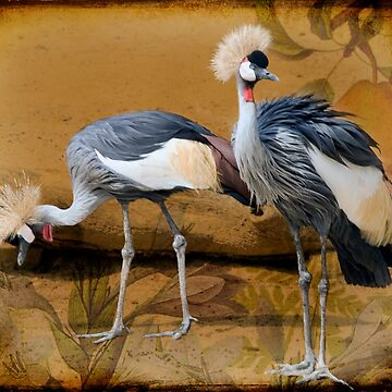 Pair Of Cranes And A Pear by Johnson-Mosley