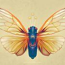 Cicada by Shannon Posedenti