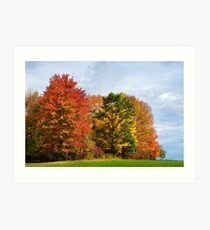 Autumn Trees Landscape Art Print