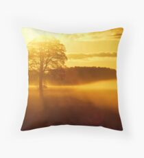 """THE DAY BEGINS"" Throw Pillow"