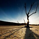 Silhouette at Deadvlei by muzy