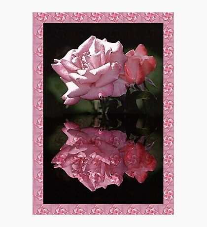 Passionately Pink Rose Duo Photographic Print