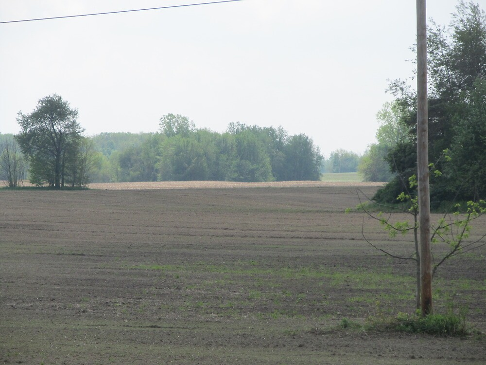 Field by Kenneth Vanover