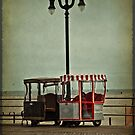 Wanna Ride? by Debra Fedchin