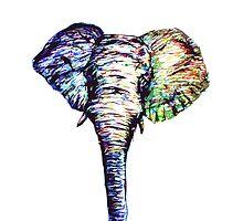 Elephantasm by William Beasley