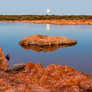 Hunter's Moon by Robin Young