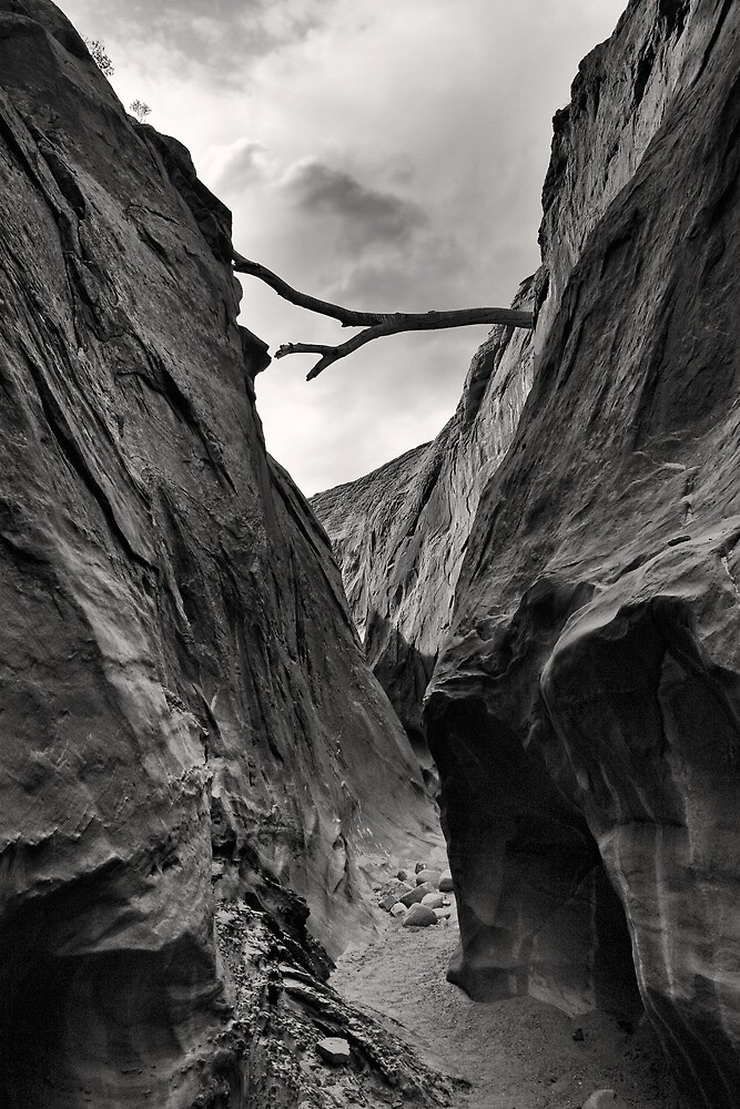 Unnamed Canyon by Kim Barton