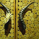 Grab the door by the horns by RightSideDown