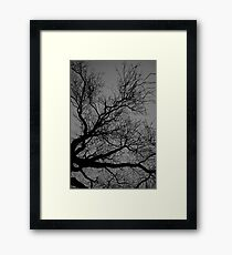 Night shadow Framed Print