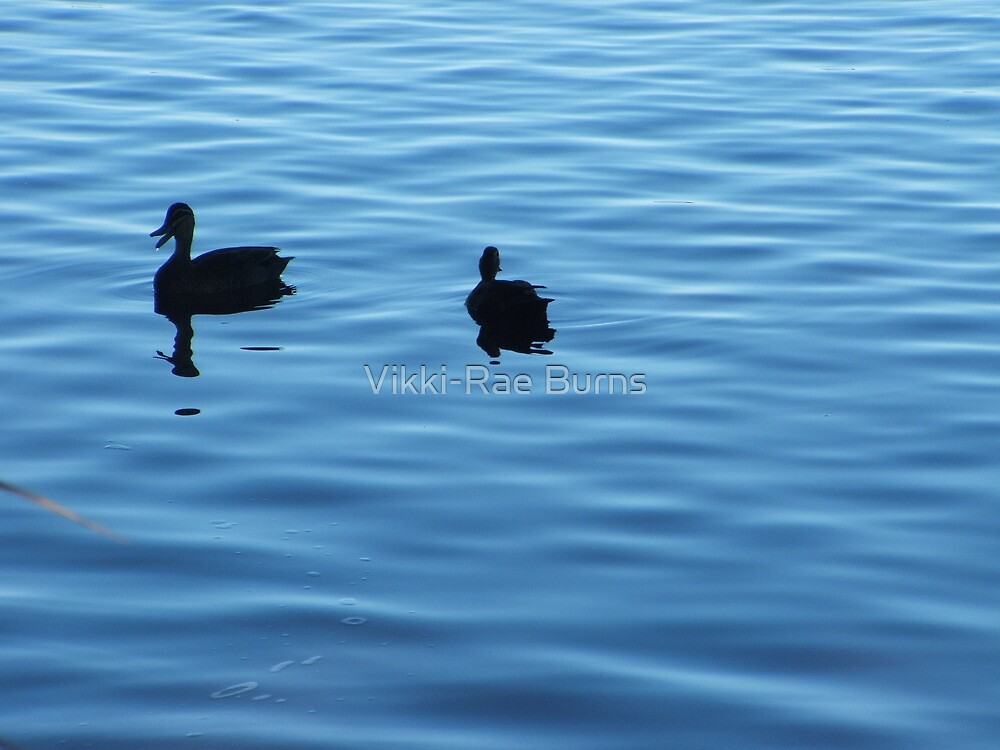 Peace and Serenity by Vikki-Rae Burns